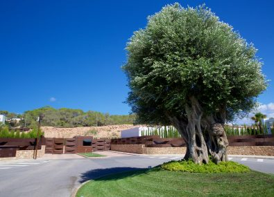 Cala Conta Dream »  - Ibiza Villas Direct